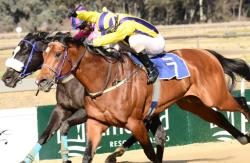Anger owned by Favour Stud wins the Gr3 August Stakes