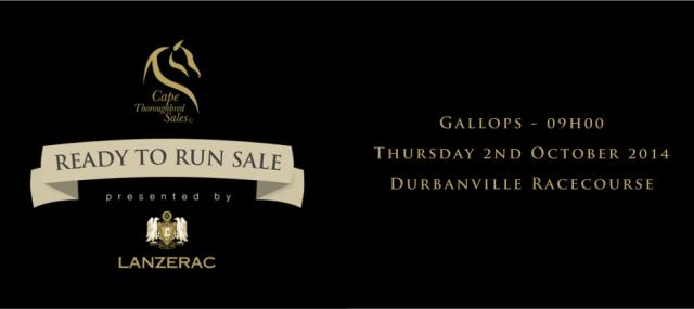 Cape Thoroughbred Sales Ready to Run sale October 2014