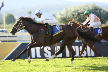 Sarve another born and bred thoroughbred winner from Favour Stud