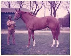 Secretariat with Mr Sweat