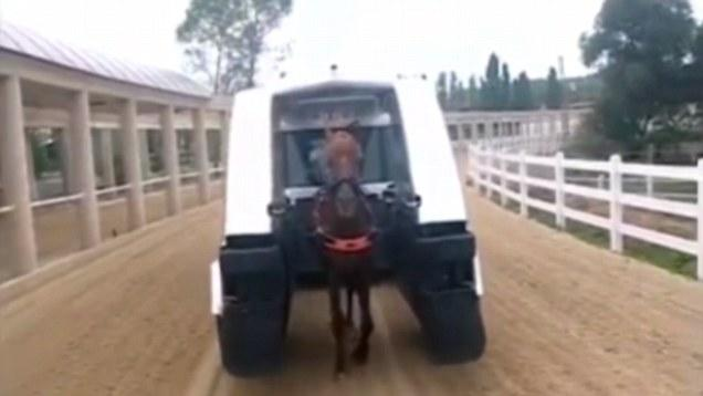 Space age Tecnology for race horse training