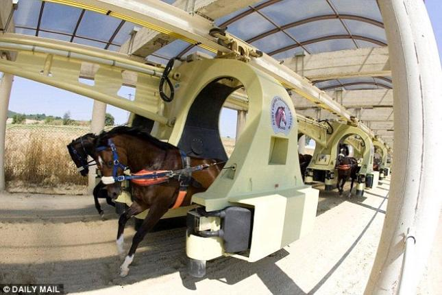 Space age Training of Race horses