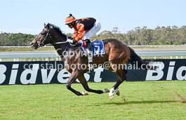 benedict winning for Yvette Bremner at Fairview race course