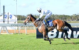 Dona Datia for favour stud for trainer Renate Du Plessis