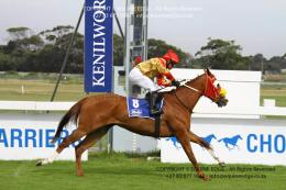 First Favour win at Kenilworth for trainer Carl Burger