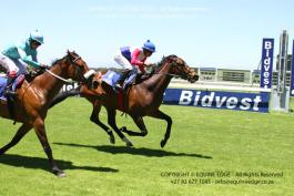 seven oceans winning his maiden for Mike Bass at Kenilworth