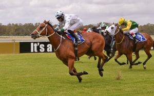 Al Lunam 2nd carreer win at Fairview racecourse for Renate Du Plessis