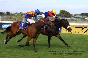 Varlo winning the Need for Speed Sprint for Dean Kannemeyer at Kenilworth