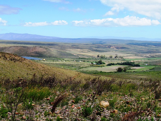 Panoramic View over Groot Phesante Fontein