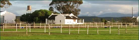 Favour Stud Farm Favour House