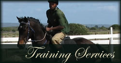 Thoroughbred horse training